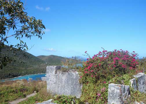 St John Johnny Horn Trail Ruins